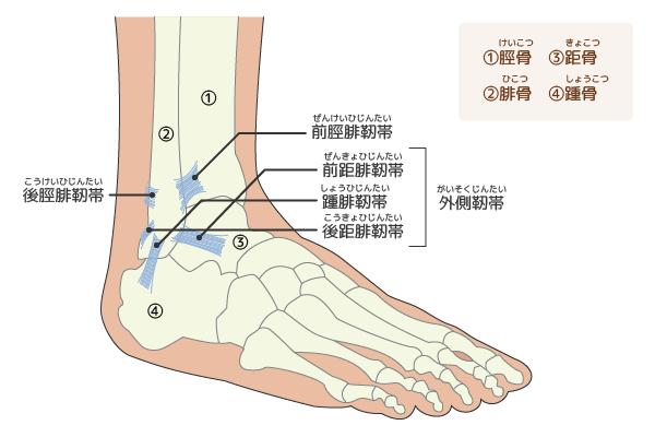 足関節外側靭帯損傷